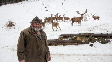 Winter im Wildpark Ferleiten