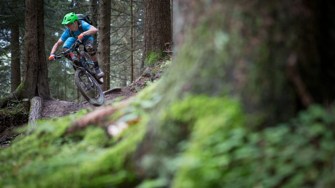 mountainbiken-downhill-wald