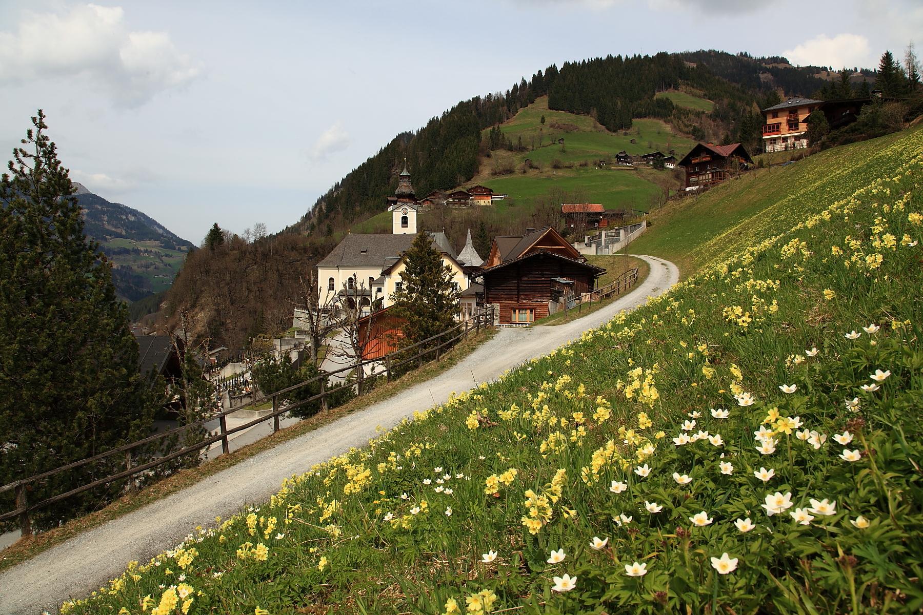 Frühling in Großarl