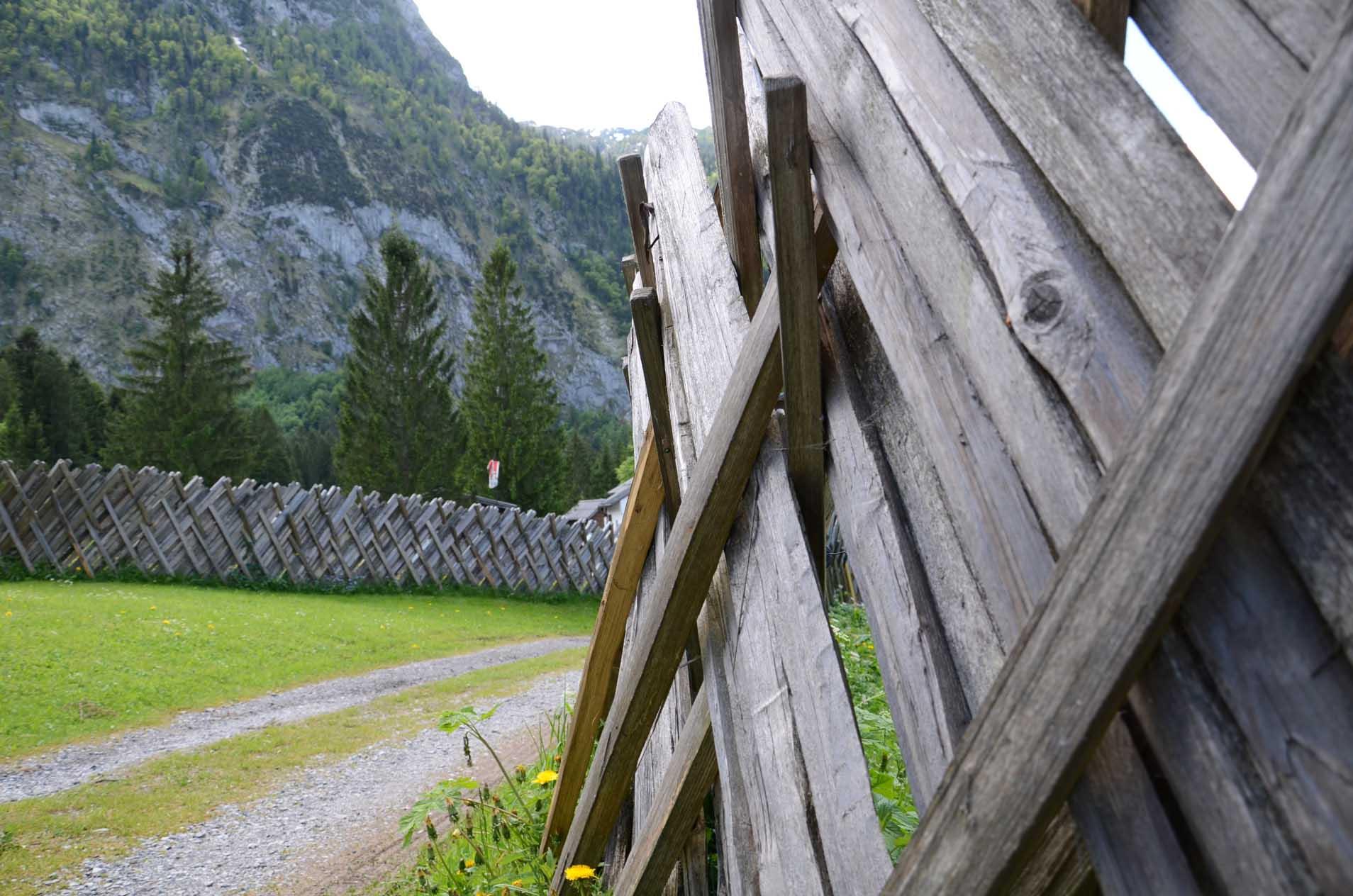 Zäune zeigen Grenzen