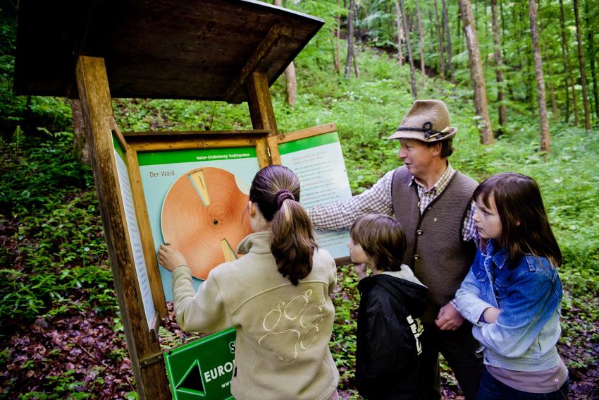 Lehrreiches über den Wald