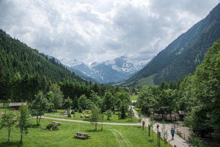 Vom Hochsitz aus hat man den perfekten Überblick über das Gelände.