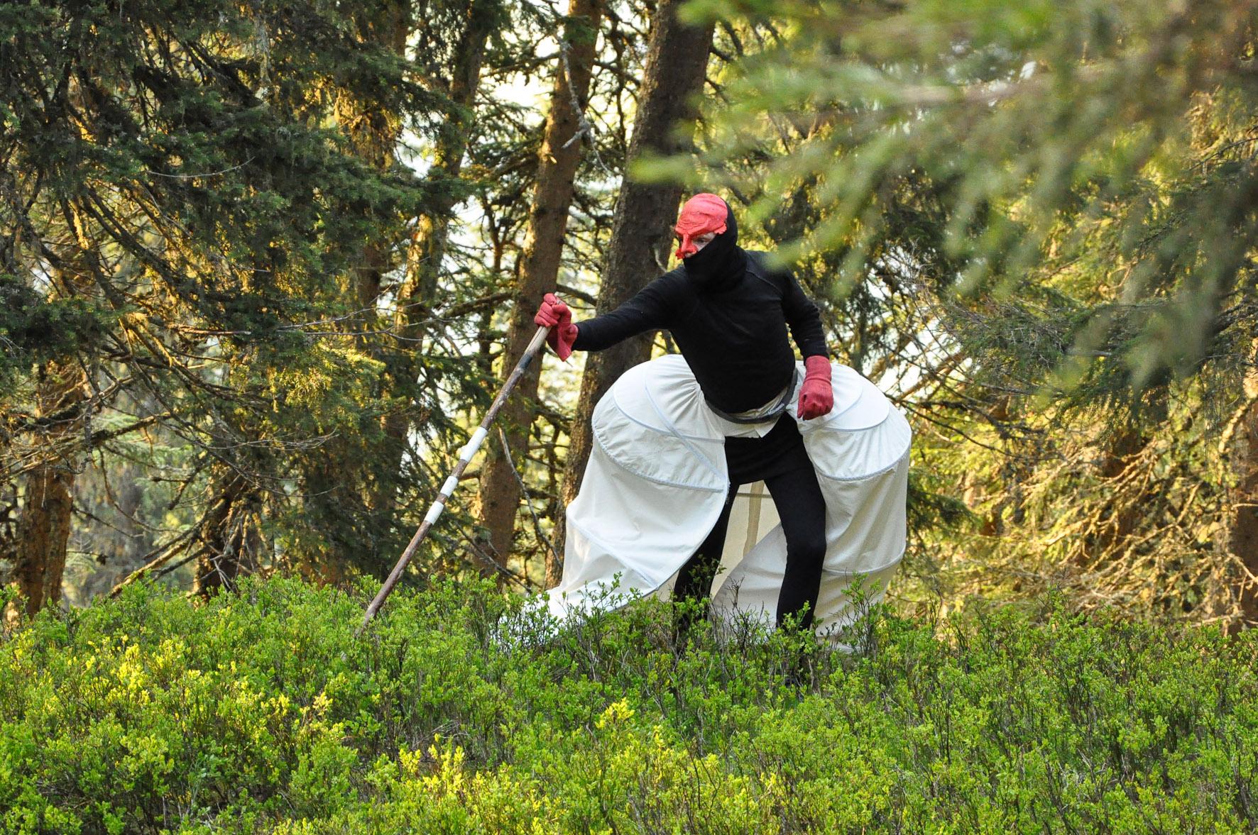 Die Waldgeister beherrschen die Zwischenwelt. c ortszeit
