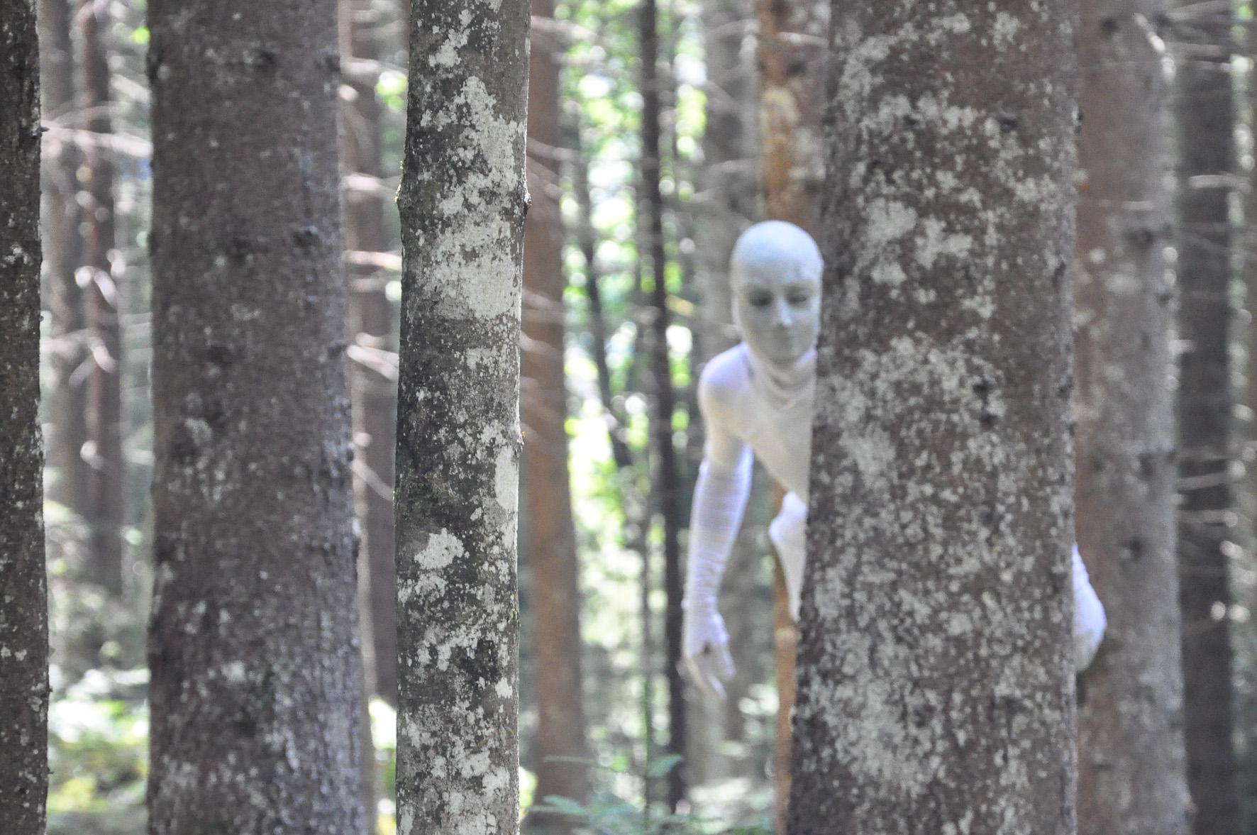 Dämonen, Geister und Gnome sind die Akteure im Wald. c ortszeit