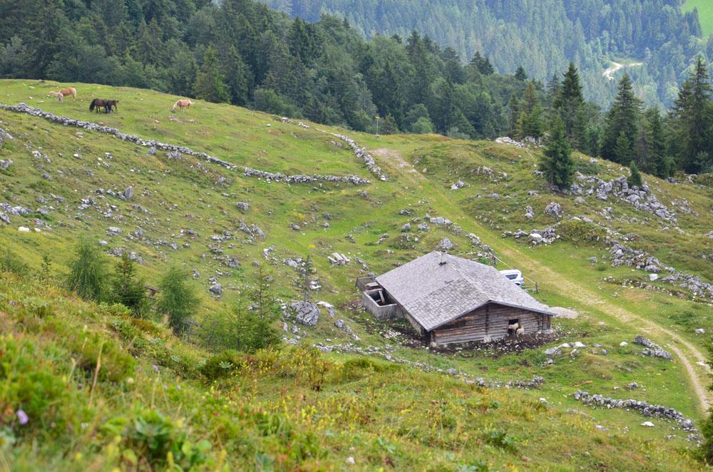 Eine alte Hütte im Hang