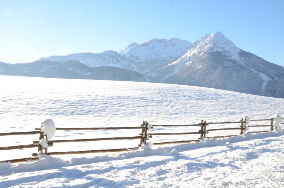 Weg zum Winterstellgut