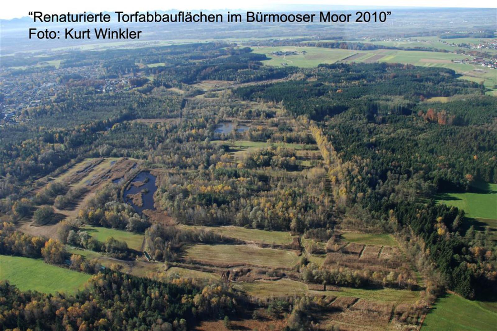 Rettung: Das renaturierte Bürmooser Moor 2010.