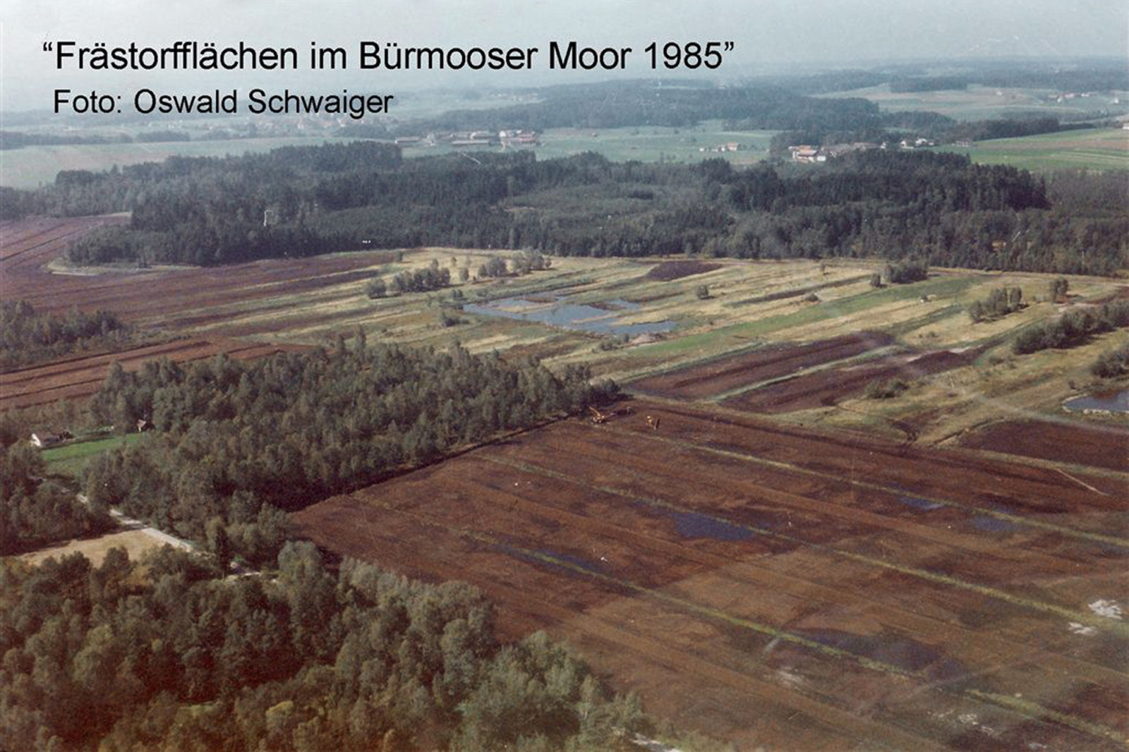 Zerstörung: So sah das Bürmooser Moor noch 1985 aus.