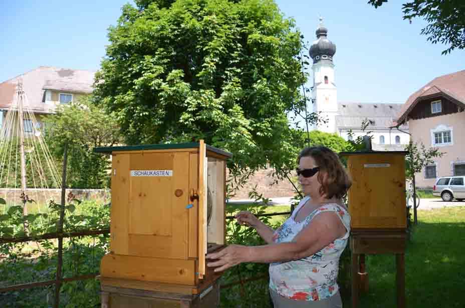 Bienenstock beim Trumer Kräutergarten