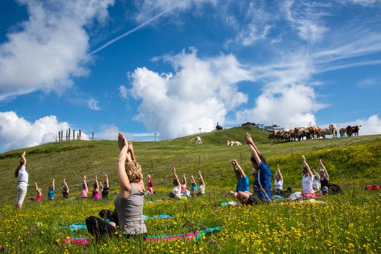 Yoga - und die Kuh schaut zu.