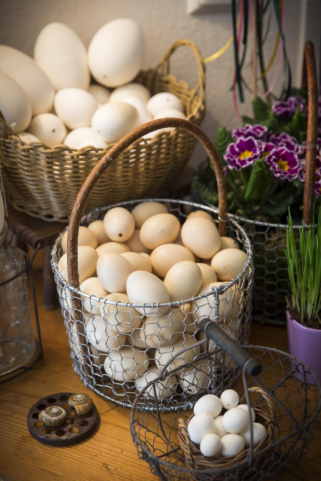 die rohen Eier findet man in allen Größen