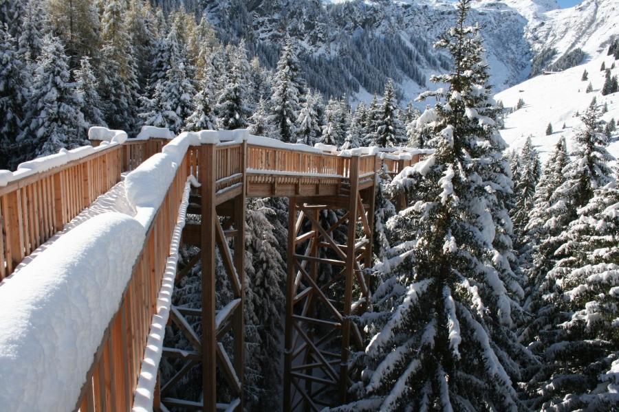 Der Baumzipfelweg führt die Besucher auf Augenhöhe mit Eichkätzchen und Co.