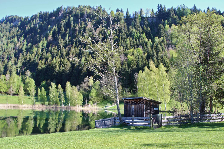 Der Böndlsee ist einer der wärmsten Seen im SalzburgerLand