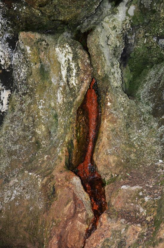 Heilendes Mineralwasser