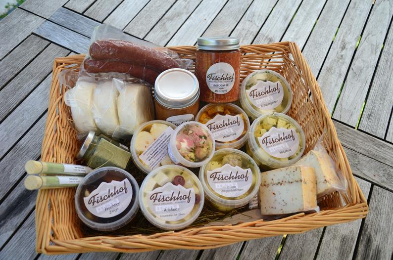 Käse und Ragout