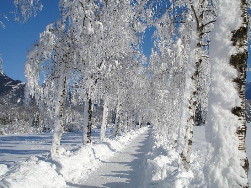 Die Bahntrasse im Winter