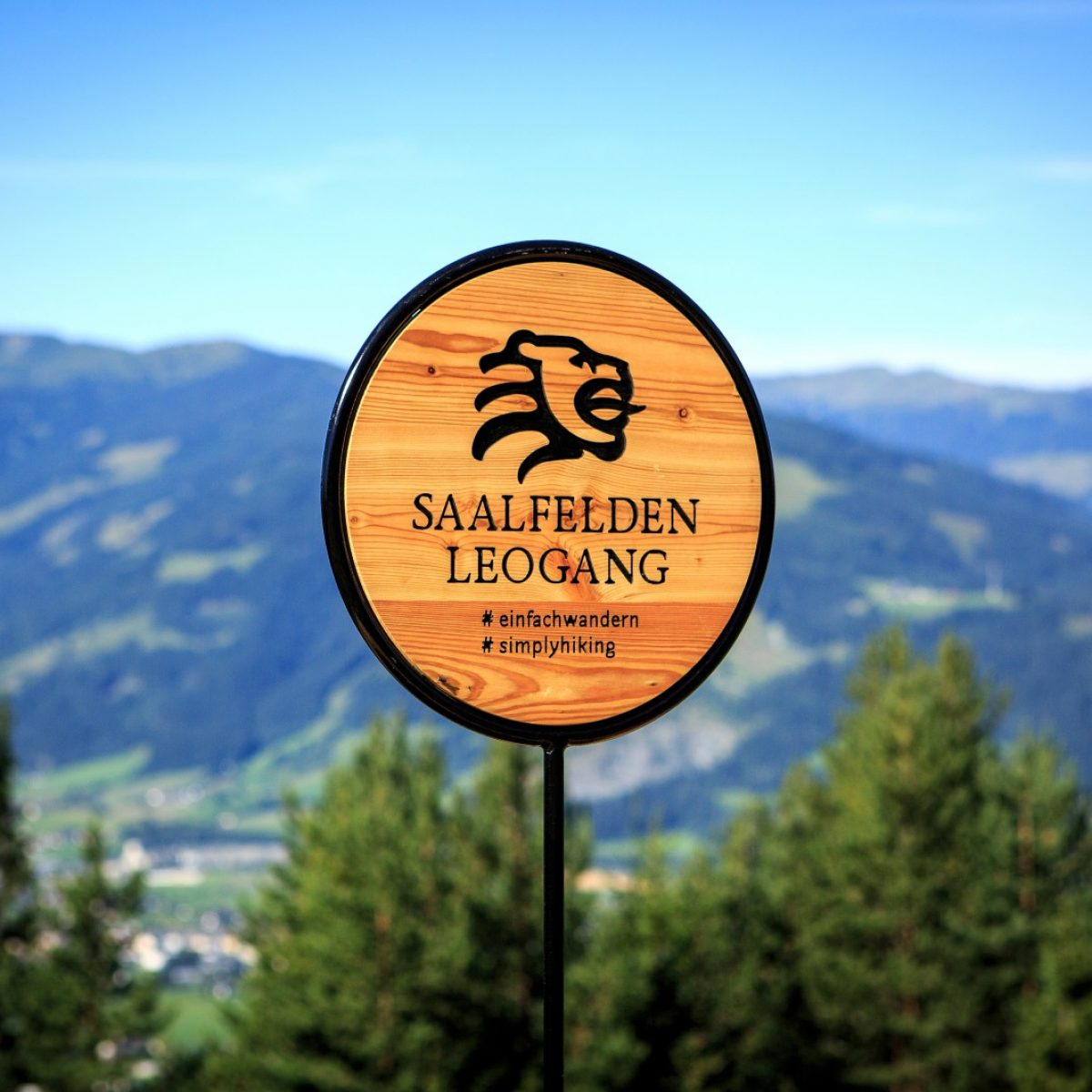 Kontrastreiches Saalfelden Leogang - Saalfelden am