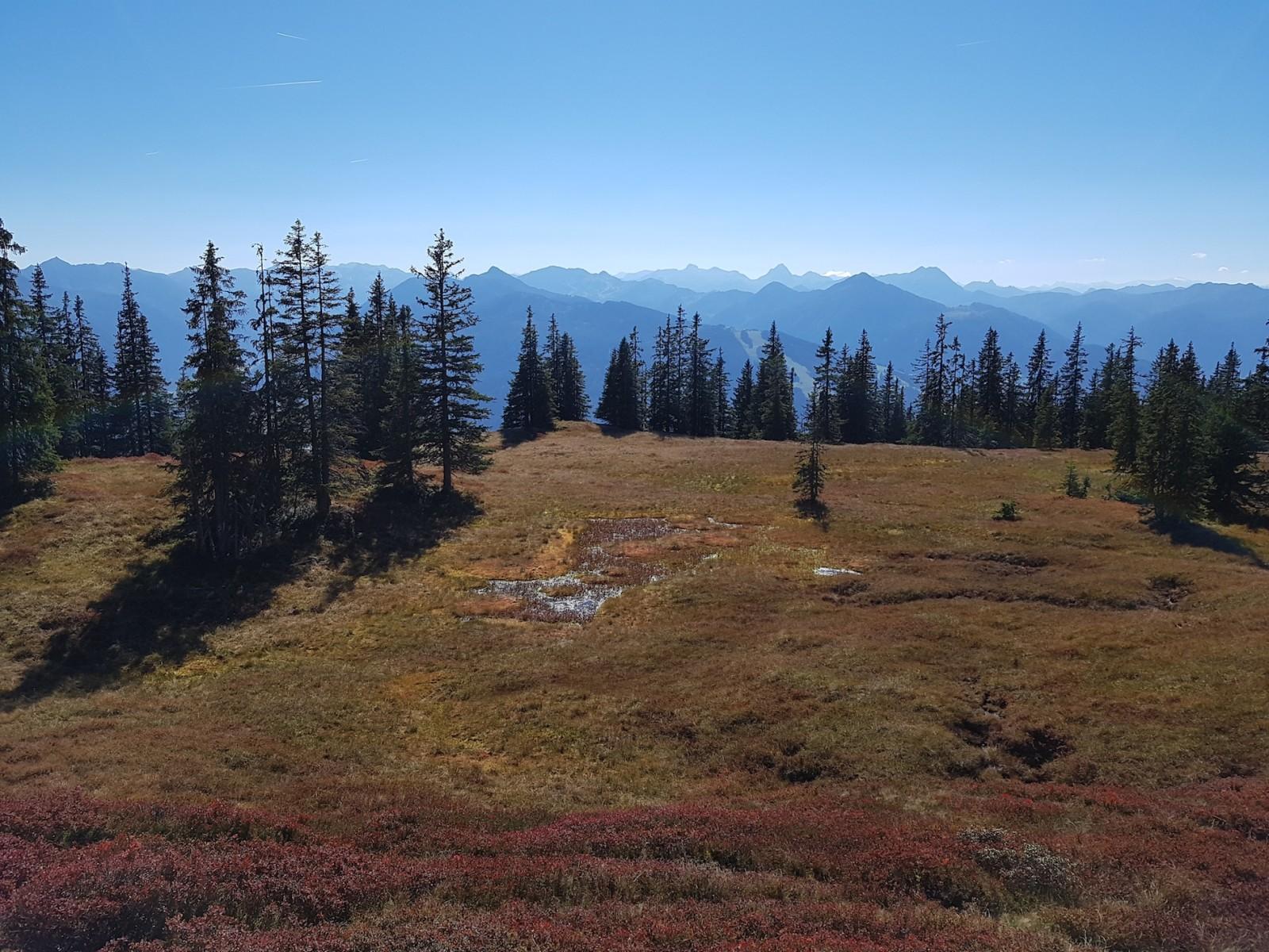 ... hinter leuchtenden Herbstfarben der Natur...