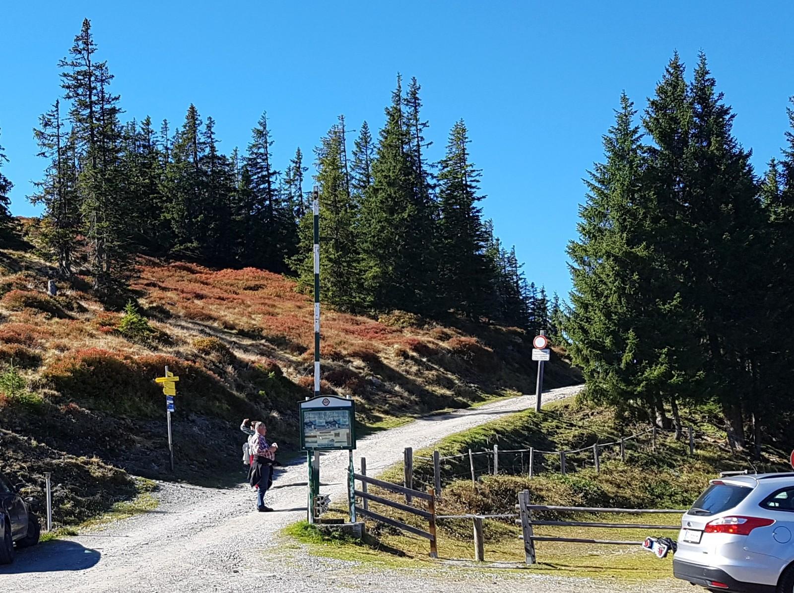 Vom Parkplatz aus gibt es zwei Wege: Den gemütlichen über den Forstweg und den abenteuerlichen über den Steilhang links.
