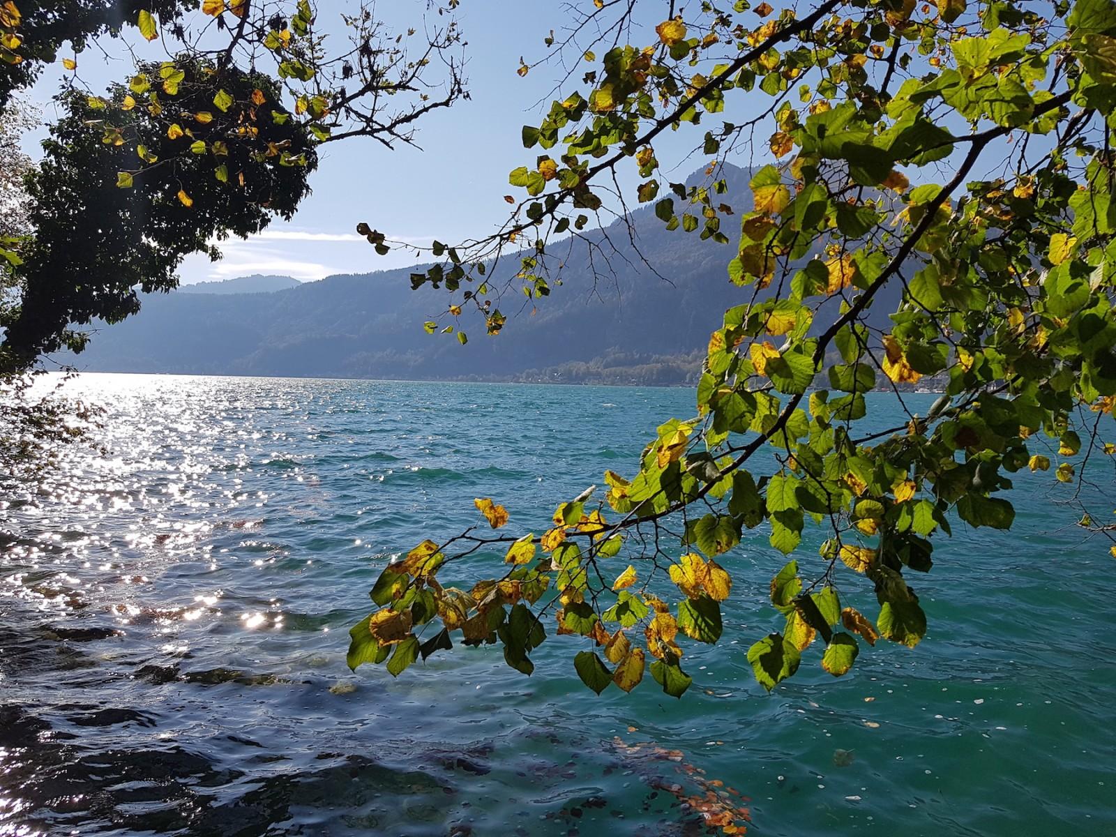 Goldene Blätter und das beeindruckende Wasser.
