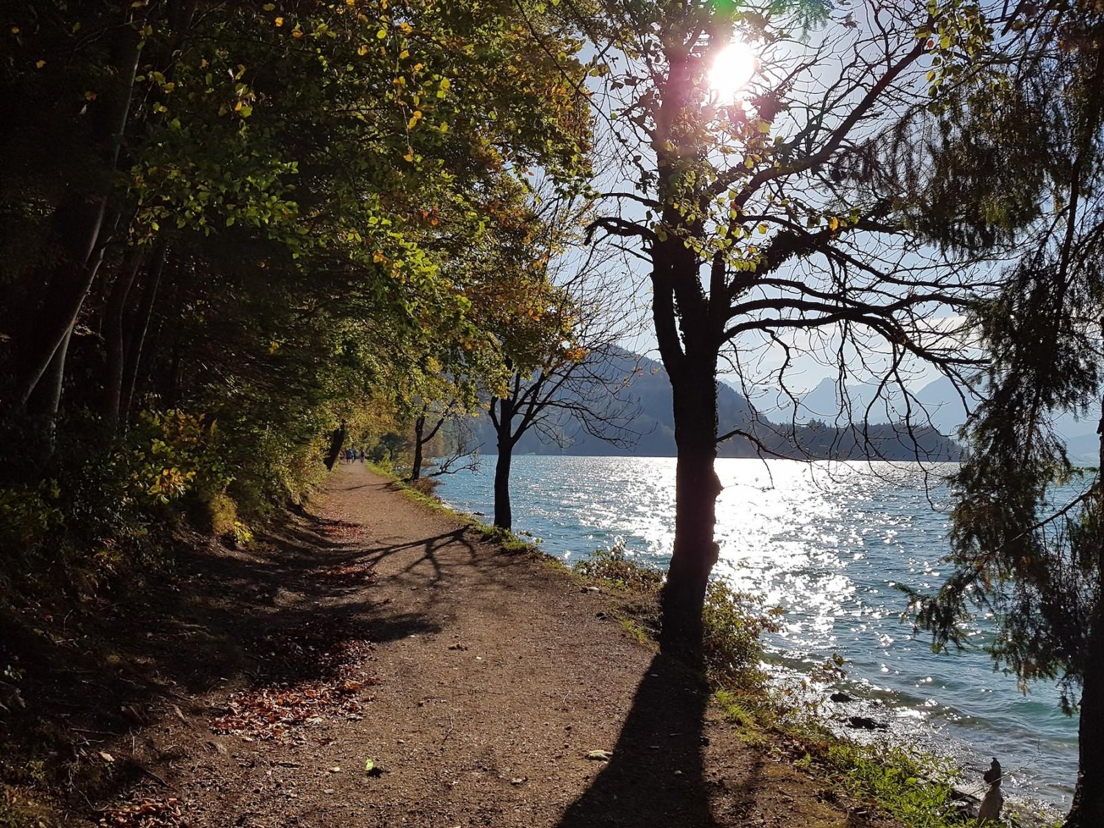 Der Wolfgangsee glitzert in der Herbstsonne...