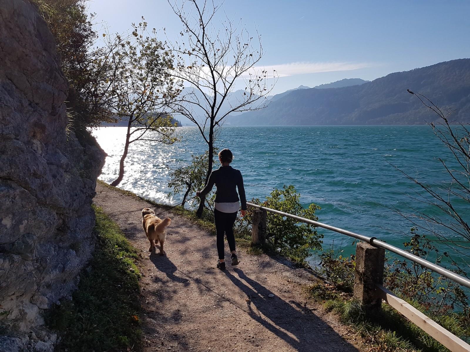...der Weg lädt zum Entdecken für Groß und Klein. Hunde bitte an die Leine nehmen.
