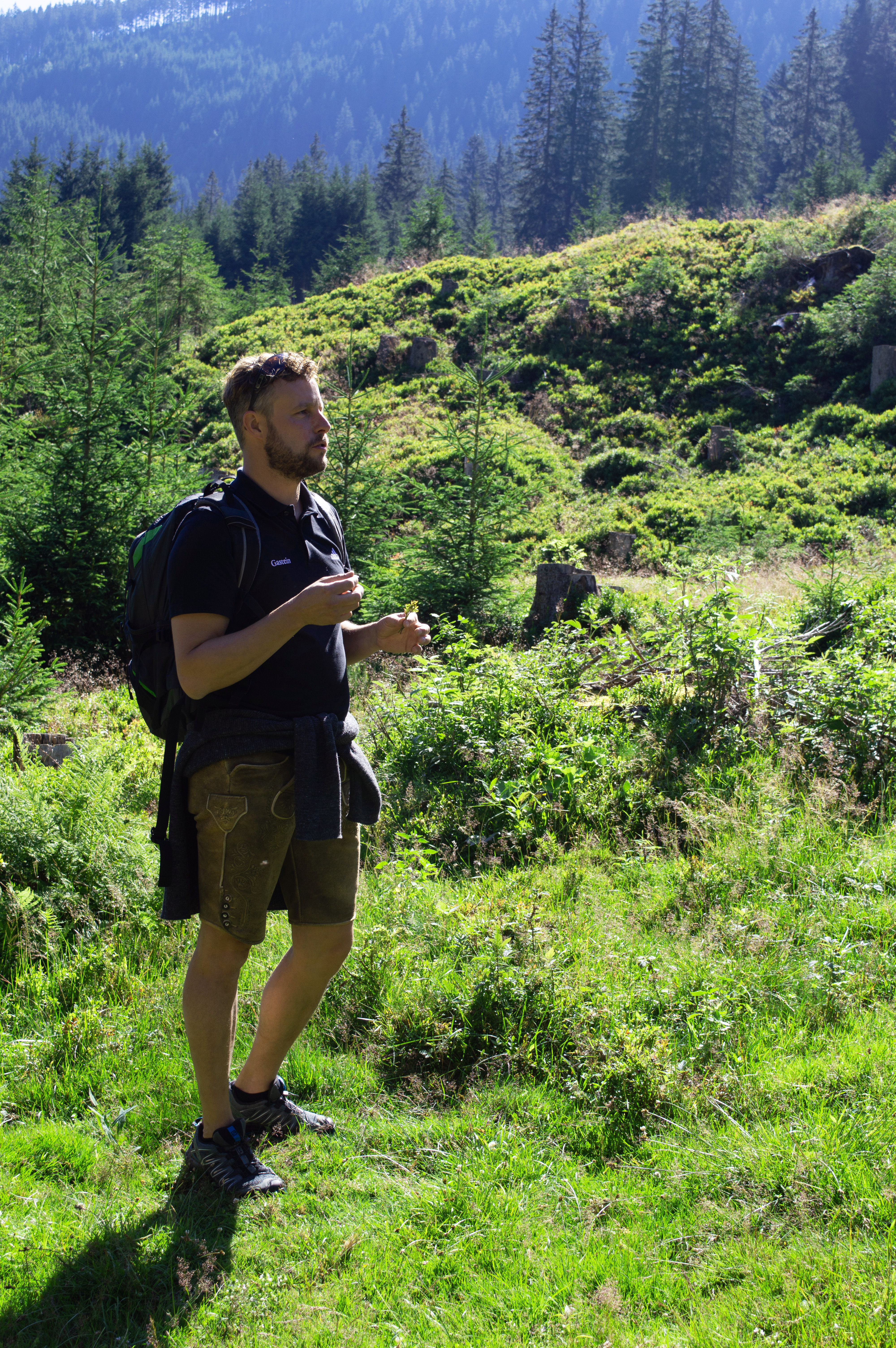 Stefan erklärt Flora & Fauna während der Wanderung