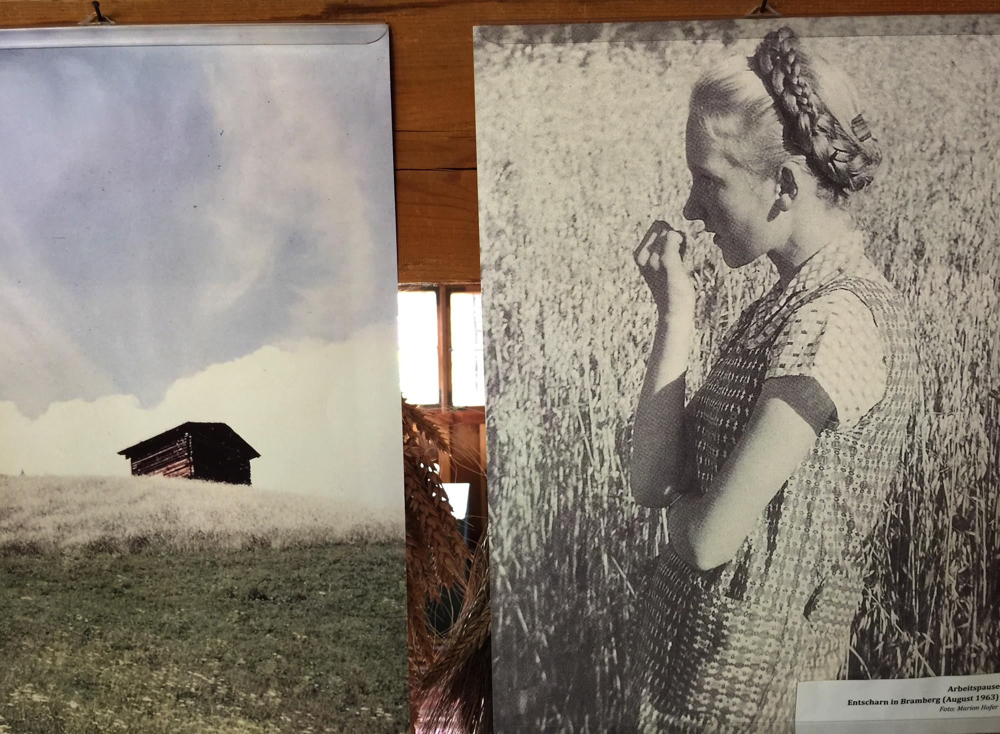 Bilderausstellung im Samplhaus