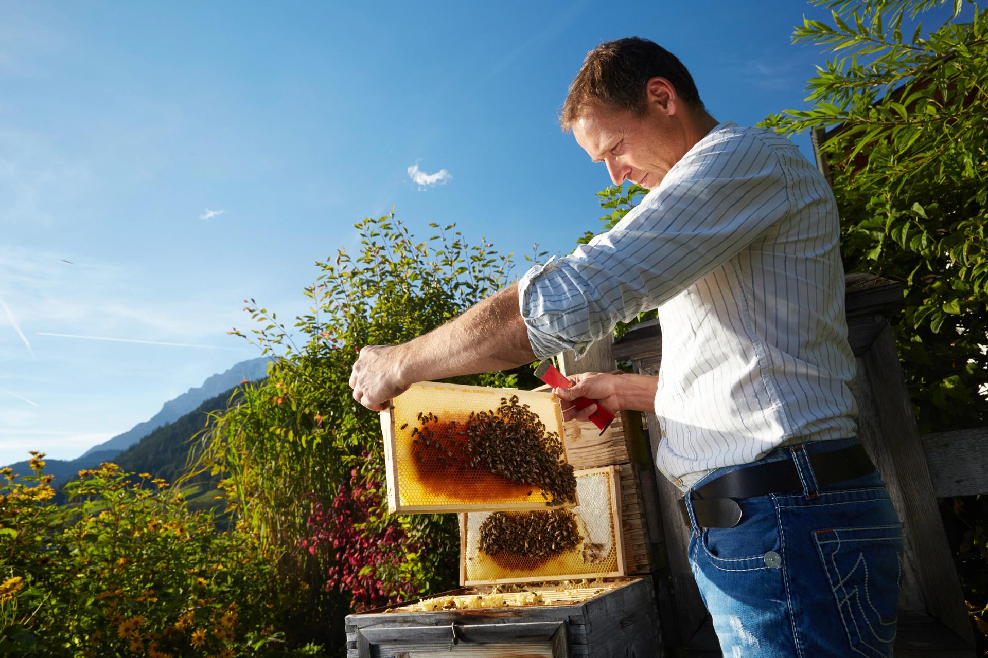 Honig direkt vom Imker kommt auch bei Wellnessanwendungen zum Einsatz