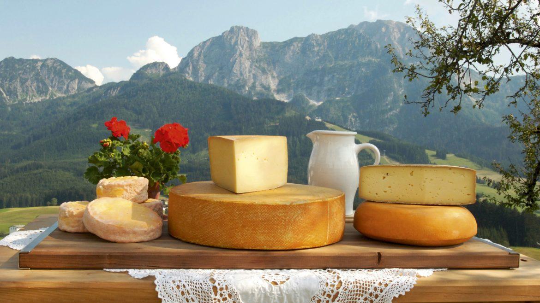 Käselaibe auf einem Tisch im Freien vor Bergkulisse