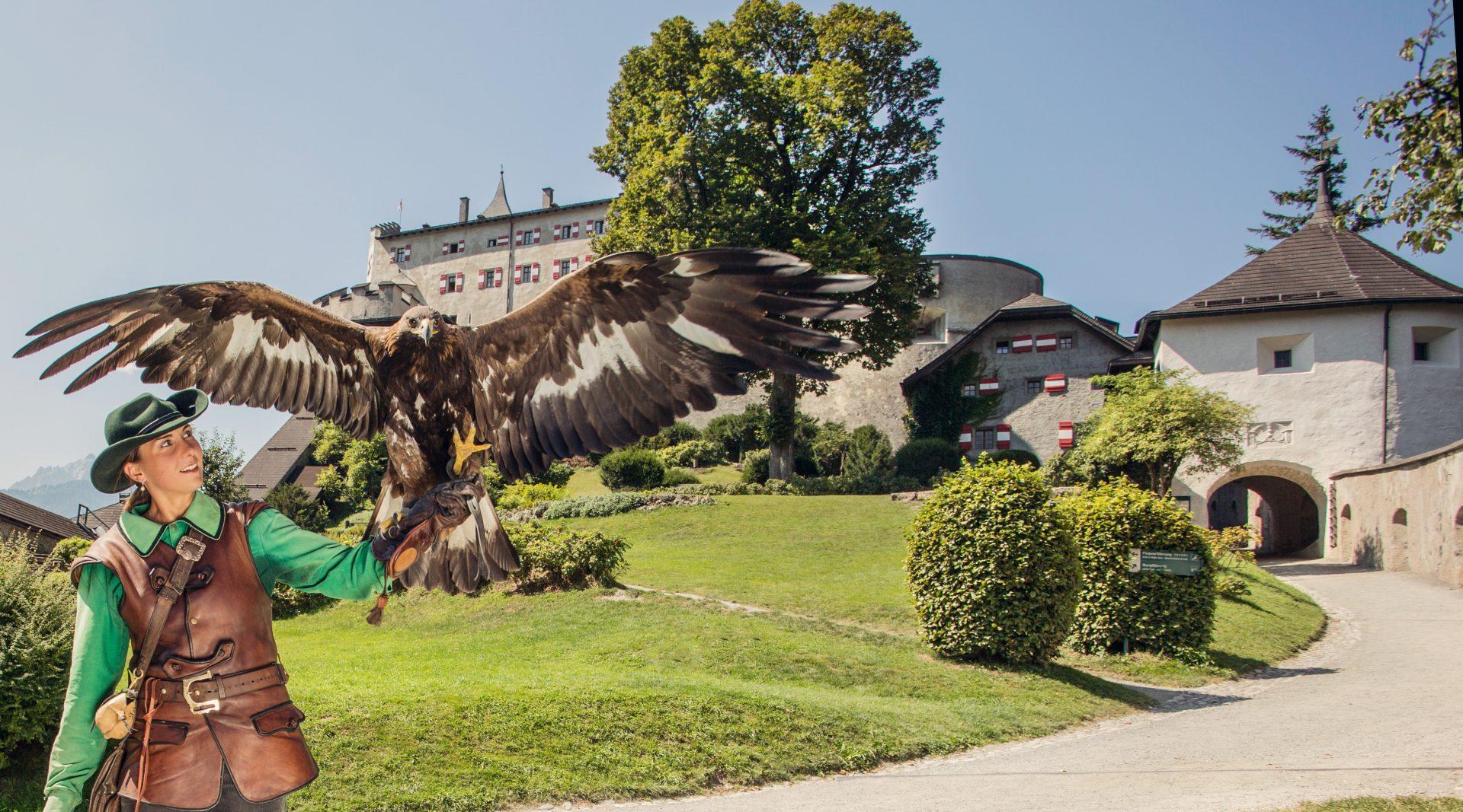 © SalzburgerLand Tourismus, Eva trifft., Burg Hohenwerfen Greifvogelschau