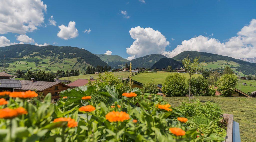 orange Blumen, im Hintergrund Häuser von Embach