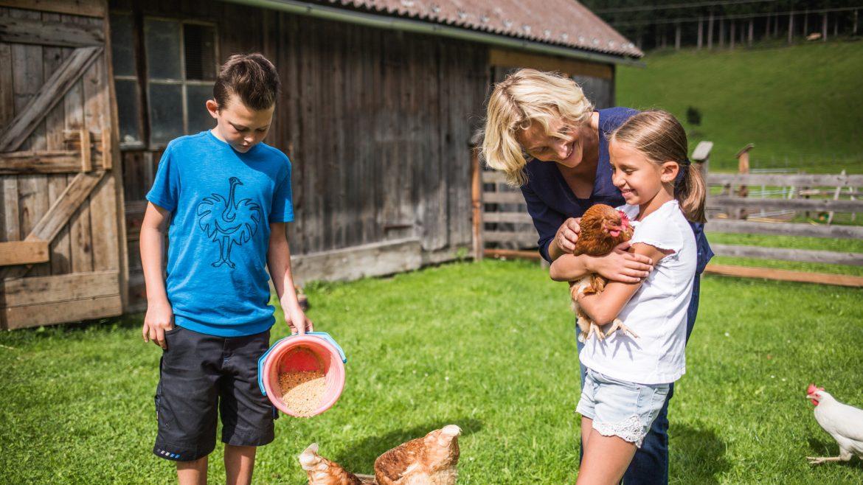 Kinder füttern Hühner am Hof