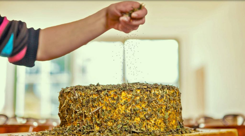 Dried herbs are crumbled by hand