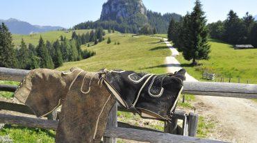 Zwei Lederhosen hängen über einem Zaun bei einer Almhütte