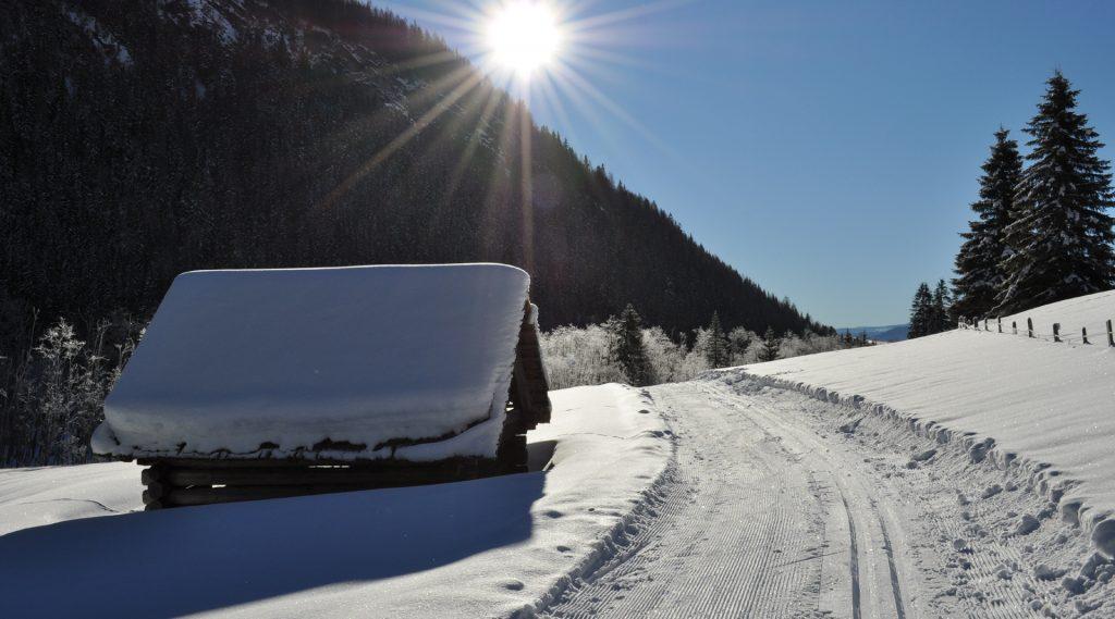 Loipe und Winterwanderweg führen an einem tief verschneiten Heustadl vorbei