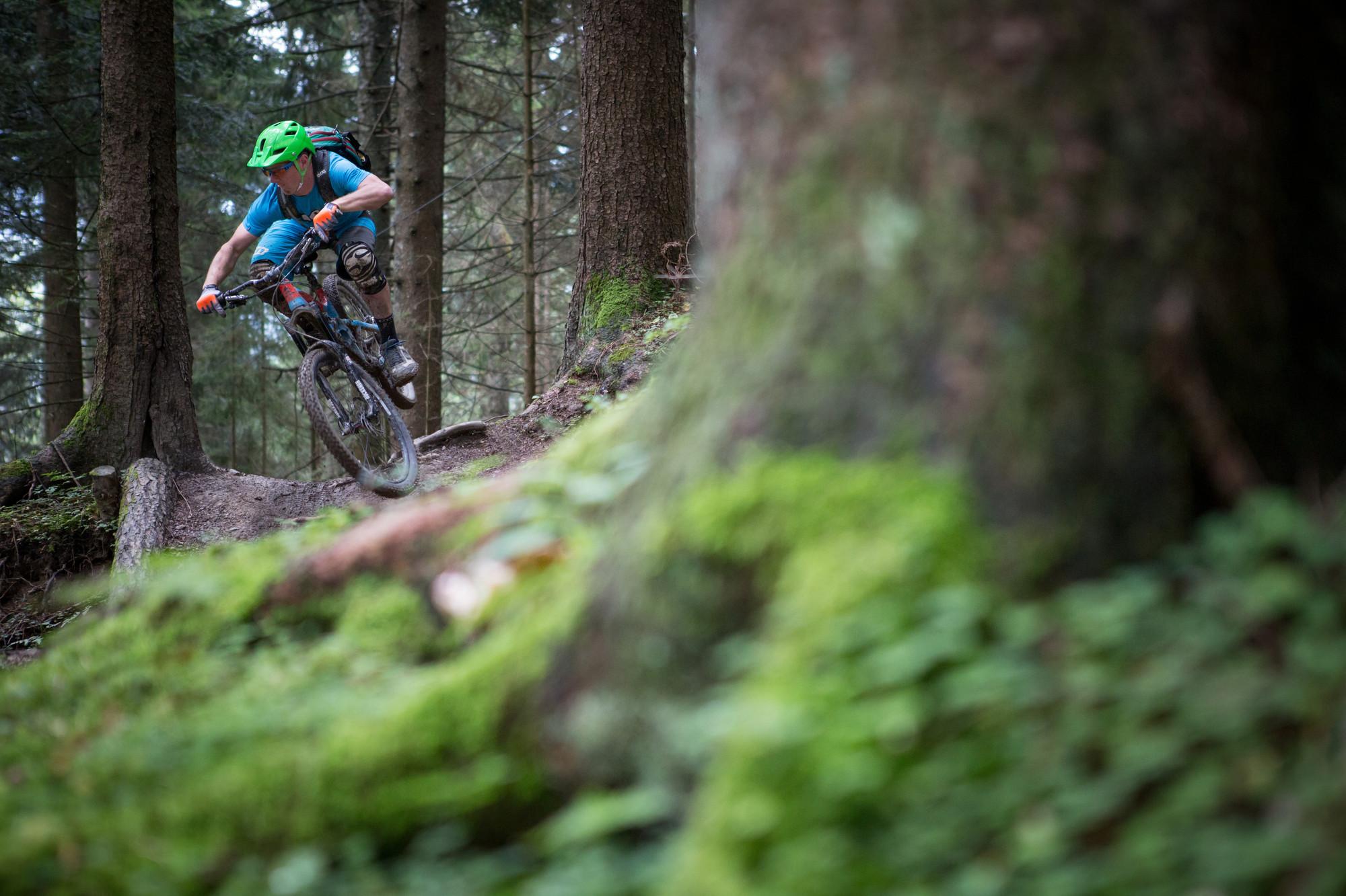 Mountainbiker fährt bergab durch den Wald über Stock und Stein