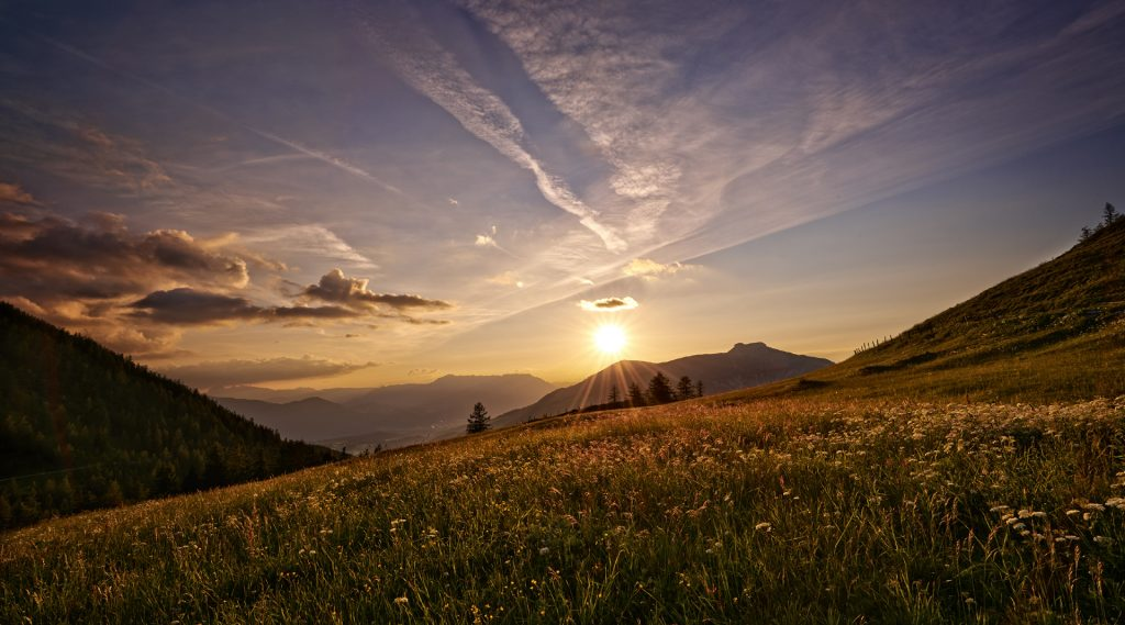 Almwiesen gegen den Sonnenuntergang