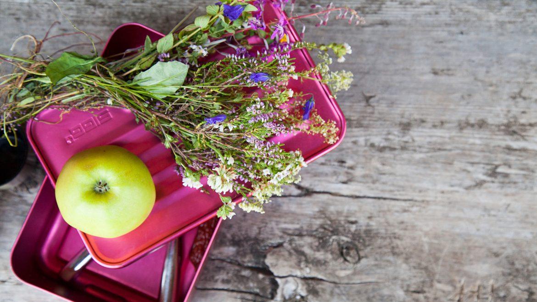 Almsommer Jausenbox mit Apfel und einem Almblumenstrauß