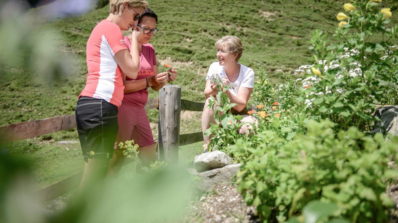 Besucher im Kräutergarten schnuppern an den Kräutern.