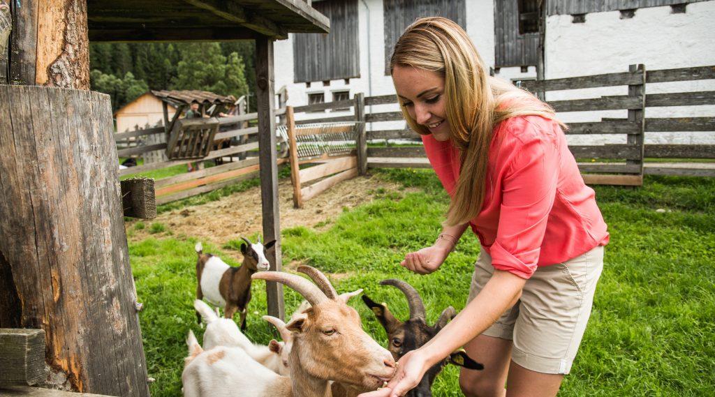 Frau füttert Zeigen vor Brunnen am Bauernhof