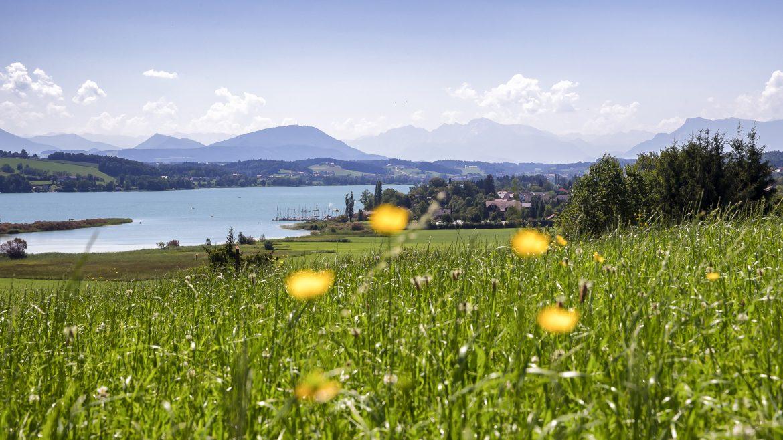 Ausblick auf die Trumer Seen