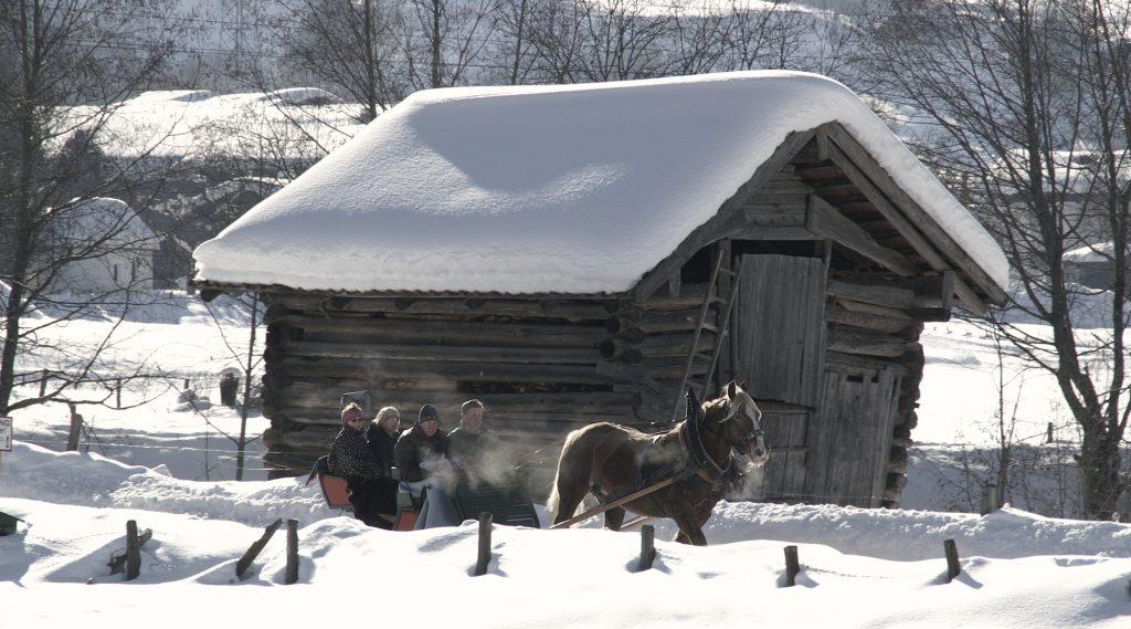 Pferdeschlittenfahrt in Piesendorf.