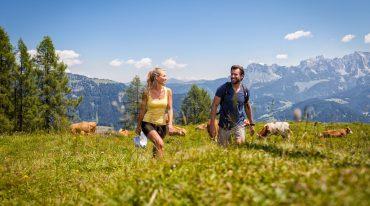 Paar wandert über die Almwiese