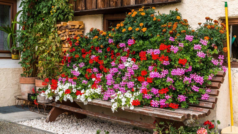 Blumen beschmückter Bauernhof