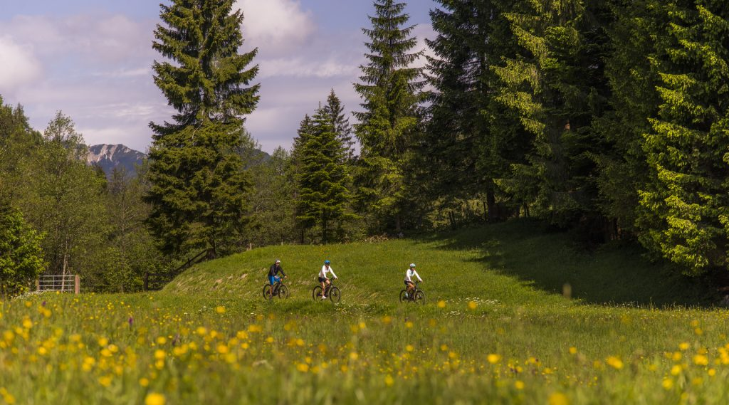 drei E-Biker auf einem Wiesenweg