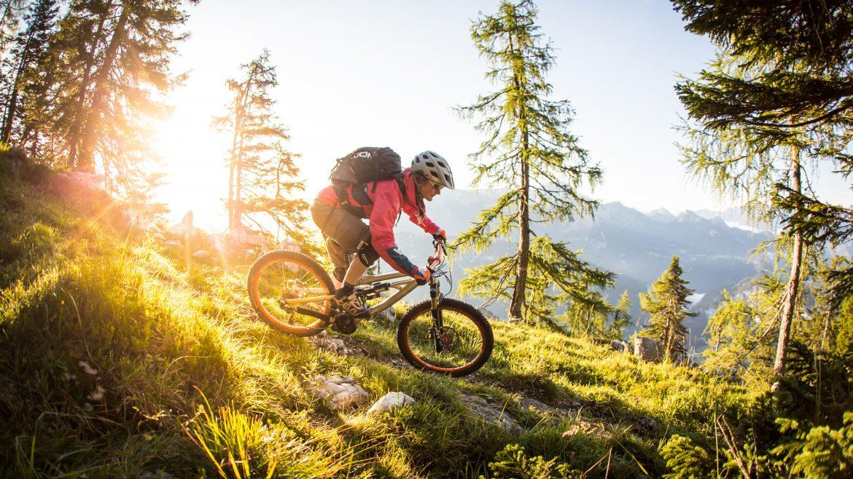 Biker fährt an zwei Bäumen bergab