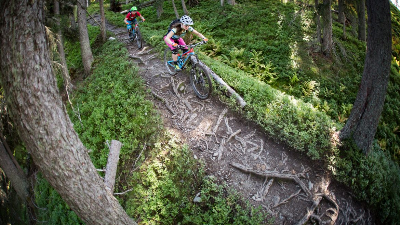 Ein Paar auf Mountainbikes auf einem Trail im Wald.