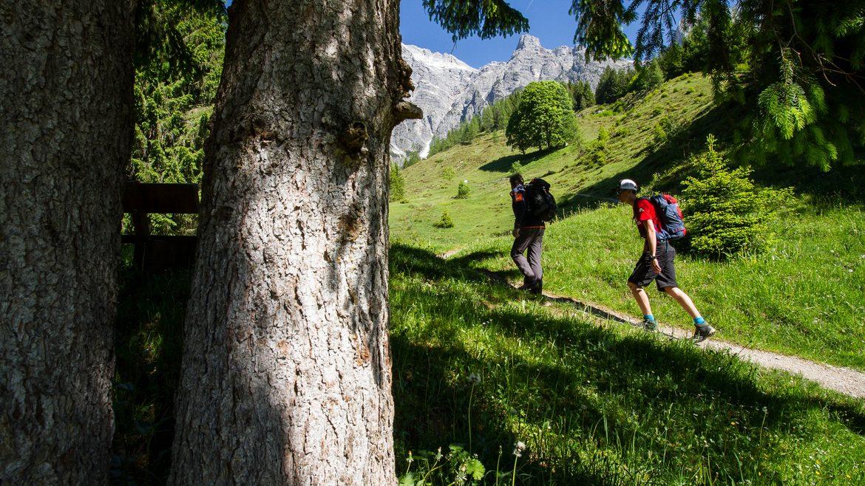 Best Mountain Artists auf dem Weg zur Passauer Hütte