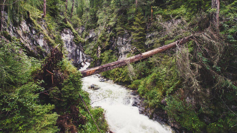 Natur pur im Salzburger Lungau